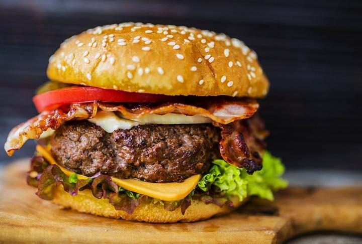Bir Burger Anatomisi