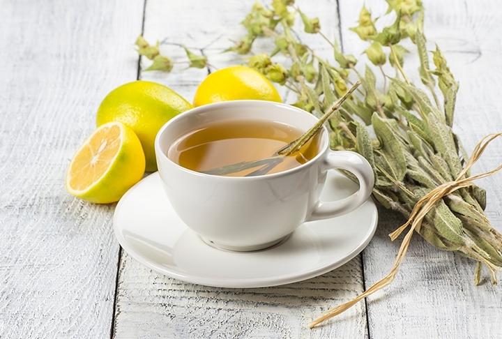 Lipton Sıcak Demleme Bitki Çayı Tarifleri
