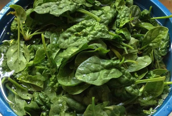 Salata Nasıl Temizlenir - Hazırlanır?