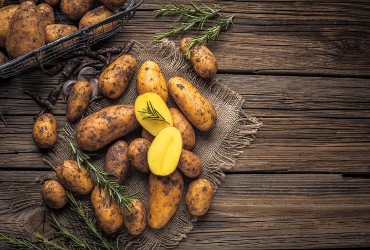 Tüm Dünyanın Favorisi: Patates